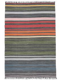 Rainbow Stripe - Gris Alfombra 160X230 Moderna Tejida A Mano Gris Claro/Gris Oscuro (Algodón, India)