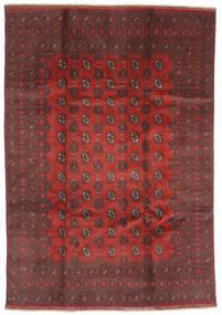 Afghan Alfombra 200X288 Oriental Hecha A Mano Rojo Oscuro/Marrón Oscuro (Lana, Afganistán)