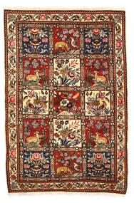 Bakhtiar Collectible Alfombra 115X170 Oriental Hecha A Mano Marrón Oscuro/Blanco/Crema (Lana, Persia/Irán)