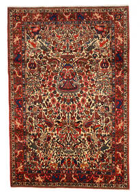 Bakhtiar Collectible Alfombra 208X311 Oriental Hecha A Mano (Lana, Persia/Irán)