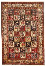 Bakhtiar Collectible Alfombra 212X311 Oriental Hecha A Mano Rojo Oscuro/Marrón Oscuro (Lana, Persia/Irán)